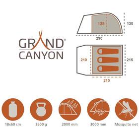 Grand Canyon Topeka 3 Teltta, green